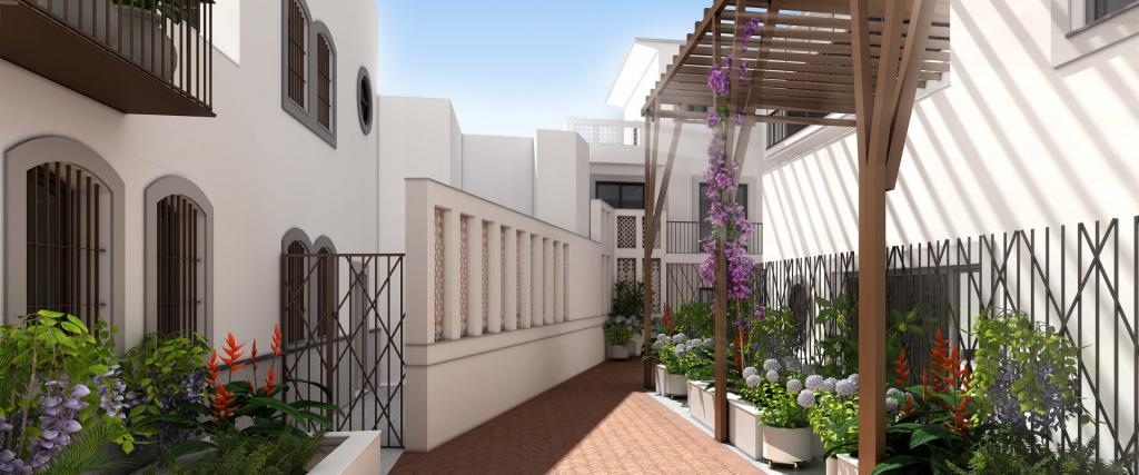 ventajas de tener plantas en nuestras viviendas